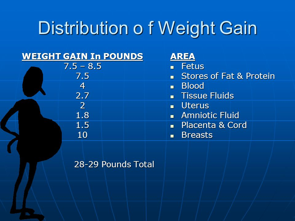 Distribution o f Weight Gain WEIGHT GAIN In POUNDS 7.5 – Pounds Total Pounds TotalAREA Fetus Fetus Stores of Fat & Protein Stores of Fat & Protein Blood Blood Tissue Fluids Tissue Fluids Uterus Uterus Amniotic Fluid Amniotic Fluid Placenta & Cord Placenta & Cord Breasts Breasts