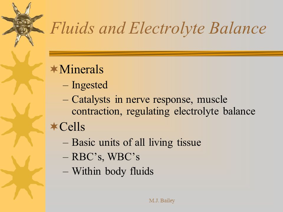 M.J. Bailey Fluids and Electrolyte Balance Minerals –Ingested –Catalysts in nerve response, muscle contraction, regulating electrolyte balance Cells –
