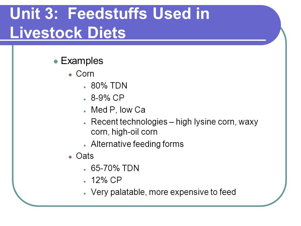 Unit 3: Feedstuffs Used in Livestock Diets Examples Corn 80% TDN 8-9% CP Med P, low Ca Recent technologies – high lysine corn, waxy corn, high-oil corn Alternative feeding forms Oats 65-70% TDN 12% CP Very palatable, more expensive to feed