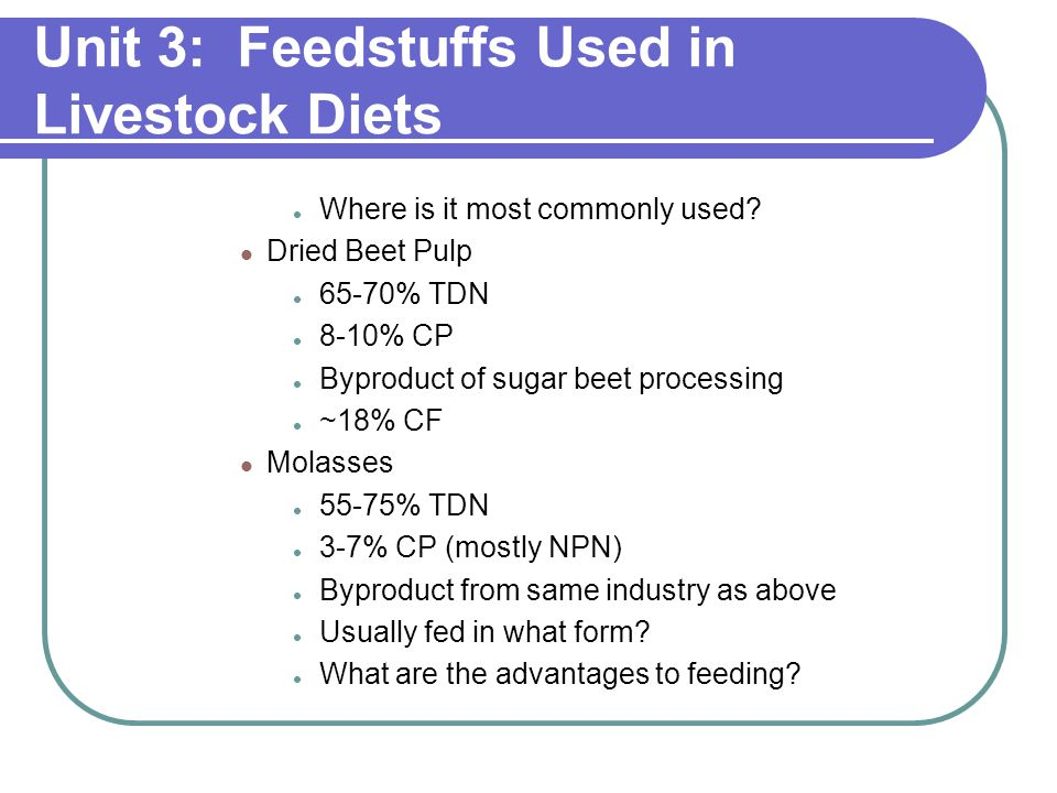 Unit 3: Feedstuffs Used in Livestock Diets Where is it most commonly used.