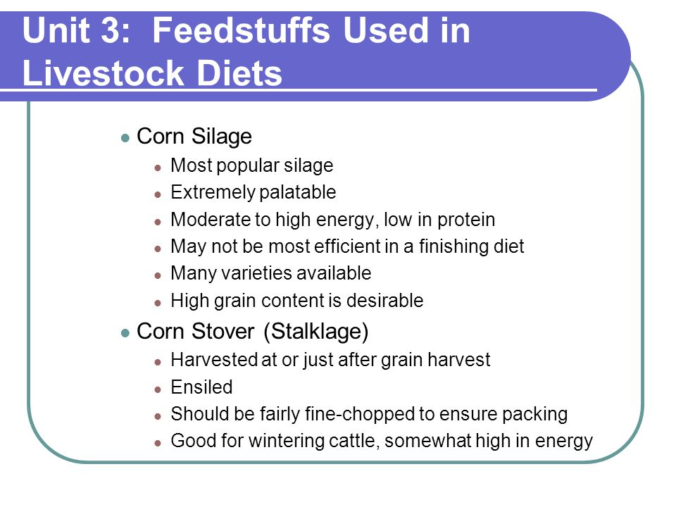 Unit 3: Feedstuffs Used in Livestock Diets Corn Silage Most popular silage Extremely palatable Moderate to high energy, low in protein May not be most efficient in a finishing diet Many varieties available High grain content is desirable Corn Stover (Stalklage) Harvested at or just after grain harvest Ensiled Should be fairly fine-chopped to ensure packing Good for wintering cattle, somewhat high in energy