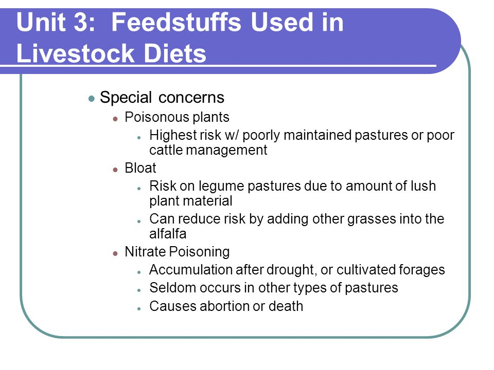 Unit 3: Feedstuffs Used in Livestock Diets Special concerns Poisonous plants Highest risk w/ poorly maintained pastures or poor cattle management Bloat Risk on legume pastures due to amount of lush plant material Can reduce risk by adding other grasses into the alfalfa Nitrate Poisoning Accumulation after drought, or cultivated forages Seldom occurs in other types of pastures Causes abortion or death