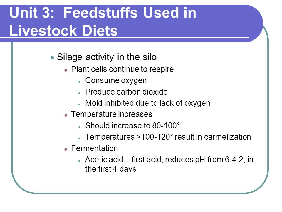 Unit 3: Feedstuffs Used in Livestock Diets Silage activity in the silo Plant cells continue to respire Consume oxygen Produce carbon dioxide Mold inhibited due to lack of oxygen Temperature increases Should increase to 80-100° Temperatures >100-120° result in carmelization Fermentation Acetic acid – first acid, reduces pH from 6-4.2, in the first 4 days