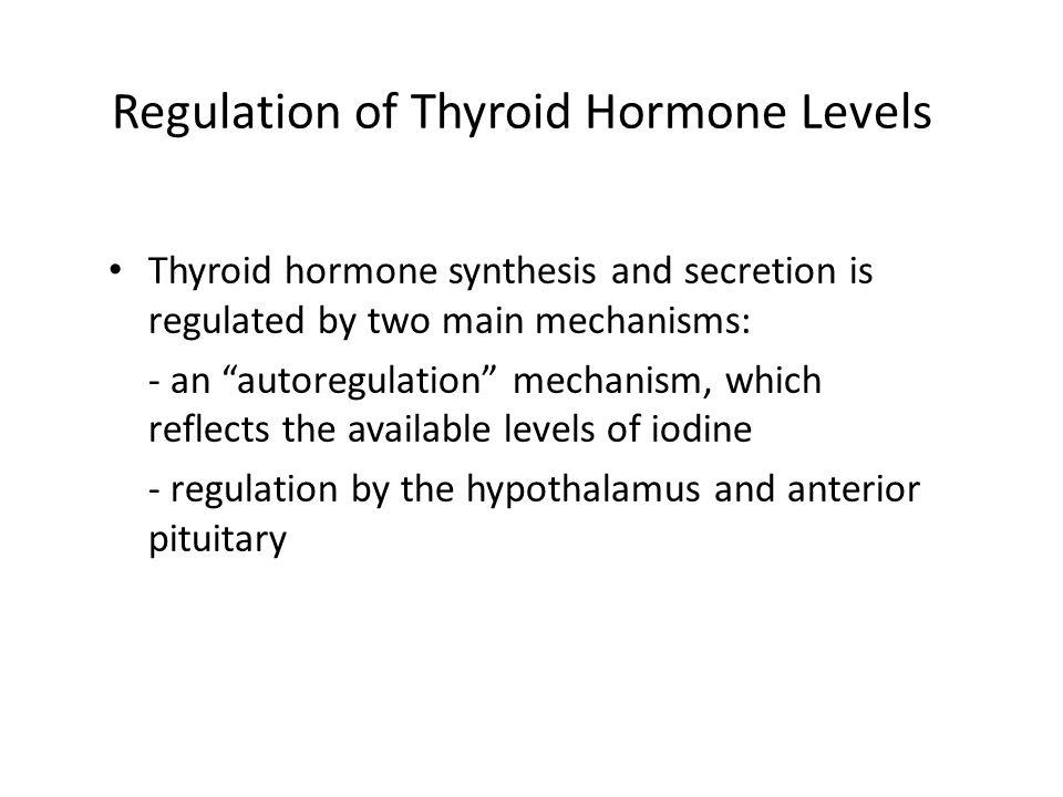 Regulation of Thyroid Hormone Levels Thyroid hormone synthesis and secretion is regulated by two main mechanisms: - an autoregulation mechanism, which