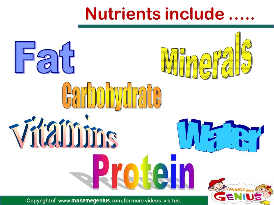 Copyright of www.makemegenius.com, for more videos,visit us. Nutrients include …..