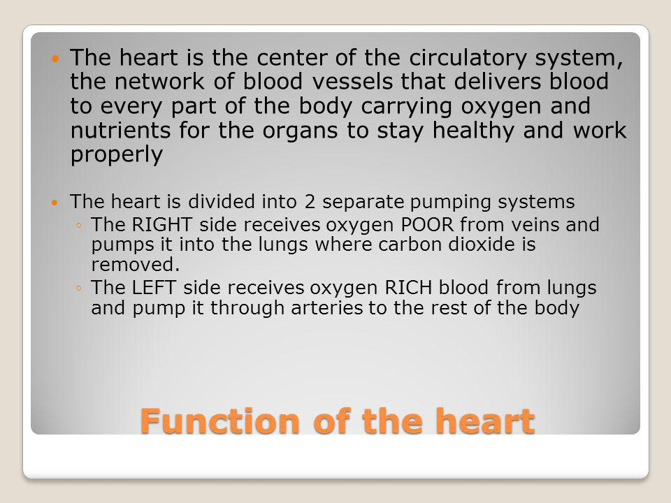 Function of the heart The heart is the center of the circulatory system, the network of blood vessels that delivers blood to every part of the body ca