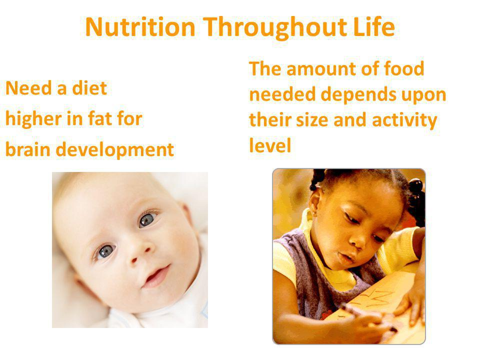 Nutrition Throughout Life Greatest nutrient and energy requirement Watch for the middle-age spread