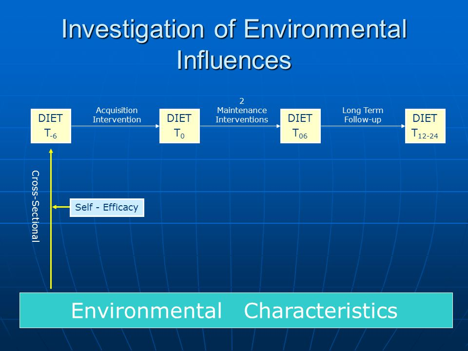 Investigation of Environmental Influences DIET T -6 DIET T 12-24 DIET T 0 DIET T 06 Environmental Characteristics Acquisition Intervention 2 Maintenance Interventions Long Term Follow-up Cross-Sectional Self - Efficacy
