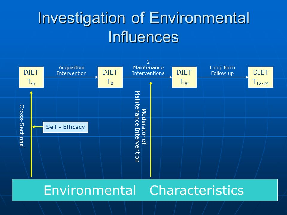 Investigation of Environmental Influences DIET T -6 DIET T 12-24 DIET T 0 DIET T 06 Environmental Characteristics Acquisition Intervention 2 Maintenance Interventions Long Term Follow-up Cross-Sectional Moderator of Maintenance Intervention Self - Efficacy