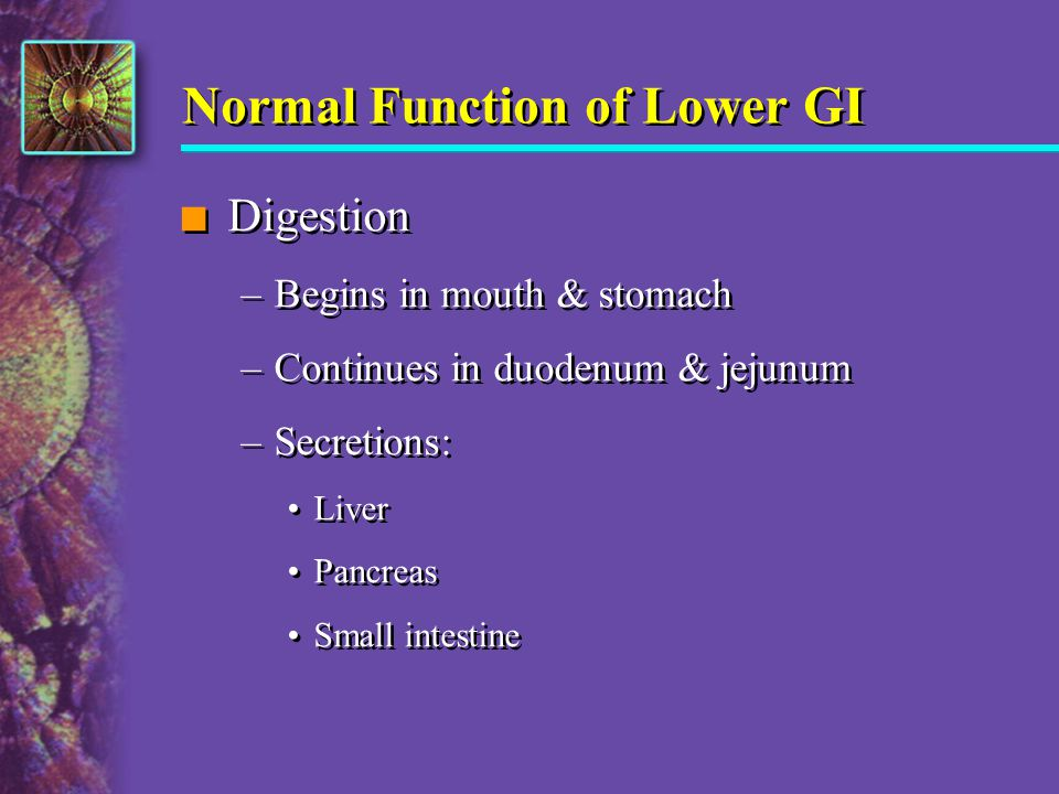 Normal Function of Lower GI n Digestion –Begins in mouth & stomach –Continues in duodenum & jejunum –Secretions: Liver Pancreas Small intestine n Dige
