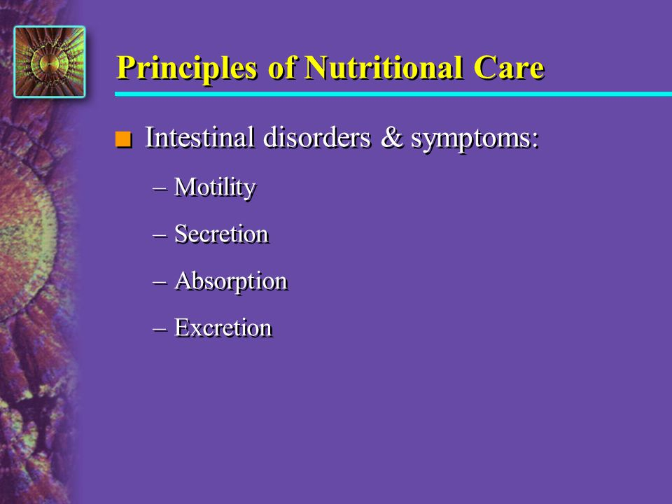 Principles of Nutritional Care n Intestinal disorders & symptoms: –Motility –Secretion –Absorption –Excretion n Intestinal disorders & symptoms: –Moti