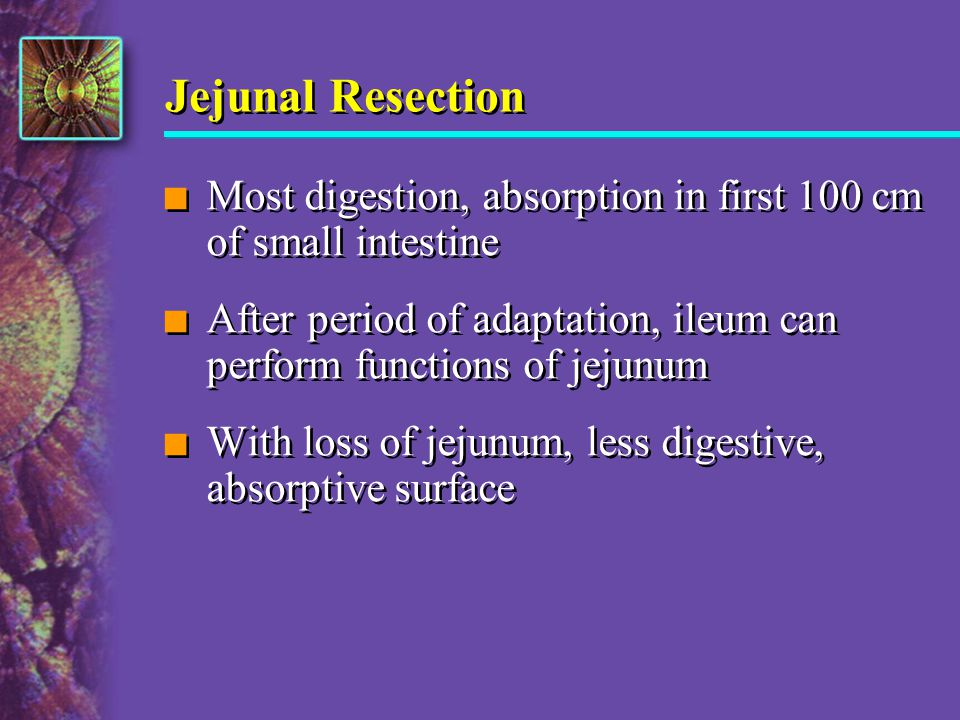 Jejunal Resection n Most digestion, absorption in first 100 cm of small intestine n After period of adaptation, ileum can perform functions of jejunum