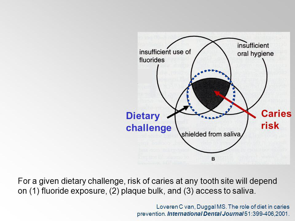 Dietary challenge Caries risk For a given dietary challenge, risk of caries at any tooth site will depend on (1) fluoride exposure, (2) plaque bulk, a