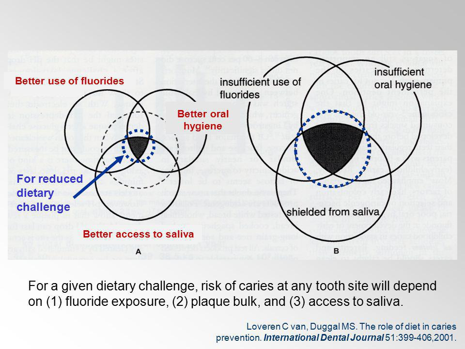 Better access to saliva Better For a given dietary challenge, risk of caries at any tooth site will depend on (1) fluoride exposure, (2) plaque bulk,