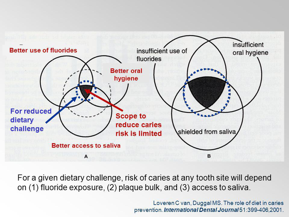 Better access to saliva Better use Better For a given dietary challenge, risk of caries at any tooth site will depend on (1) fluoride exposure, (2) pl