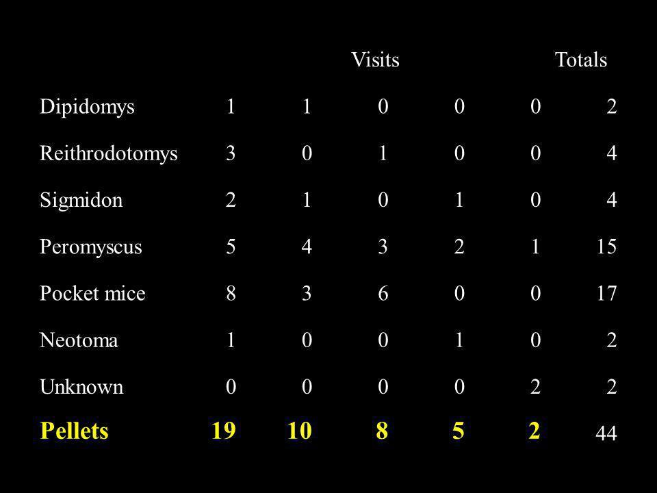 VisitsTotals Dipidomys110002 Reithrodotomys301004 Sigmidon210104 Peromyscus5432115 Pocket mice8360017 Neotoma100102 Unknown000022 Pellets1910852 44