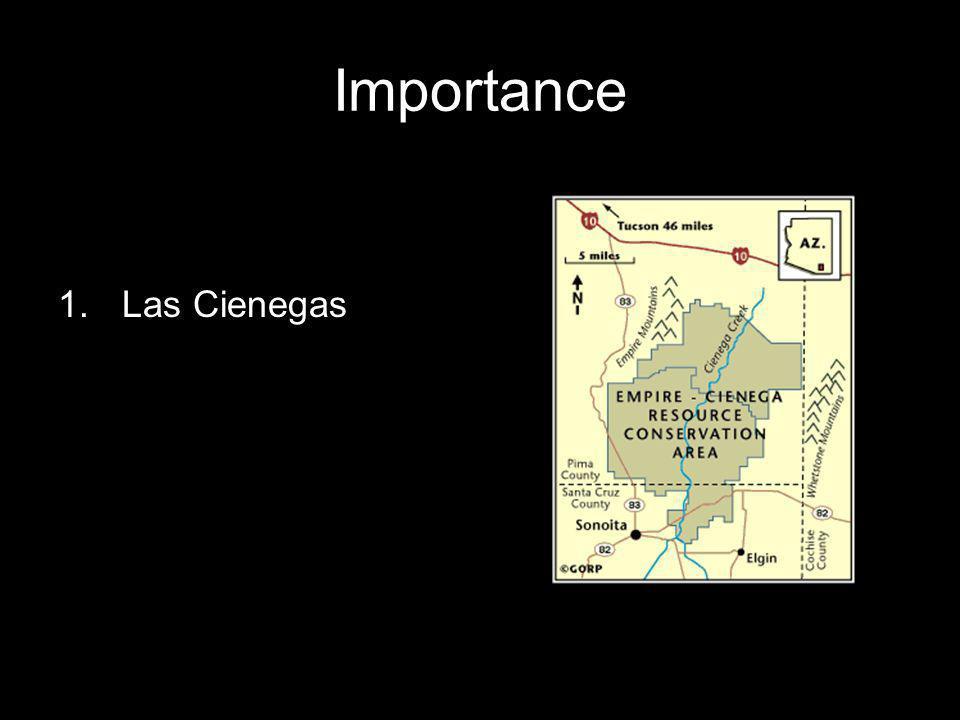 Importance 1.Las Cienegas
