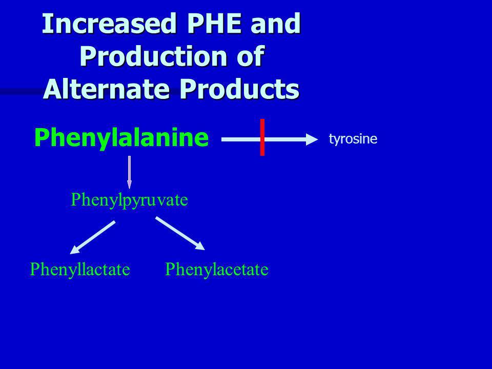 Increased PHE and Production of Alternate Products Phenylpyruvate PhenyllactatePhenylacetate Phenylalanine tyrosine