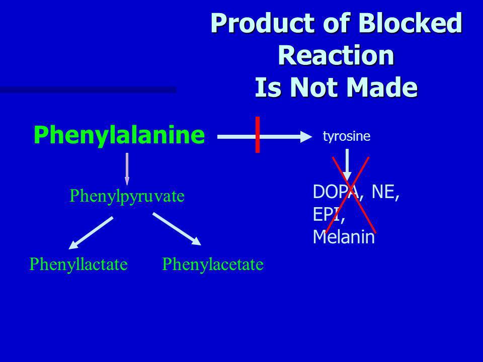 Product of Blocked Reaction Is Not Made Phenylpyruvate PhenyllactatePhenylacetate Phenylalanine tyrosine DOPA, NE, EPI, Melanin