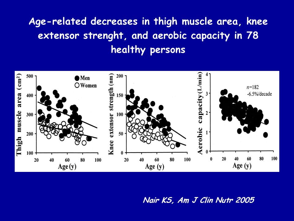 Age-related decreases in thigh muscle area, knee extensor strenght, and aerobic capacity in 78 healthy persons Nair KS, Am J Clin Nutr 2005