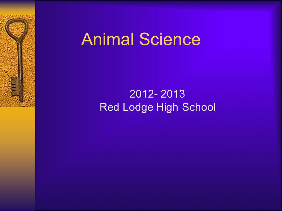 Animal Science 2012- 2013 Red Lodge High School
