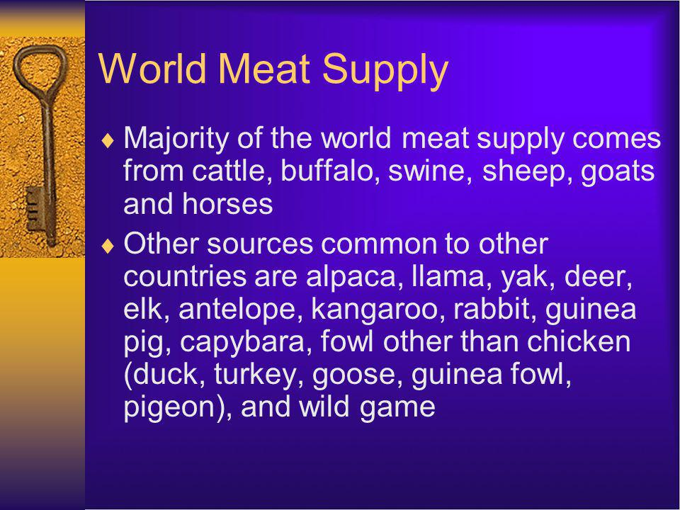 World Meat Supply Majority of the world meat supply comes from cattle, buffalo, swine, sheep, goats and horses Other sources common to other countries are alpaca, llama, yak, deer, elk, antelope, kangaroo, rabbit, guinea pig, capybara, fowl other than chicken (duck, turkey, goose, guinea fowl, pigeon), and wild game