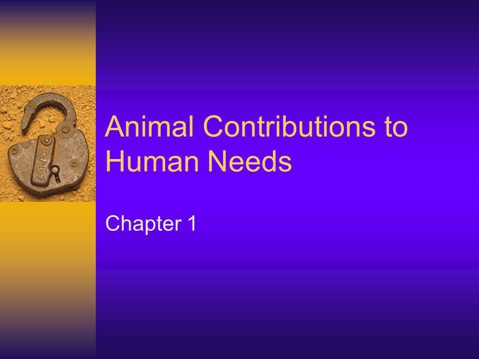 Companionship, Recreation and Creativity Many species of animals qualify as companions where people derive pleasure from them The contribution of animals as companions is meaningful, though hard to quantify Many animals are used for recreation –Bull fighting, rodeos and other sports