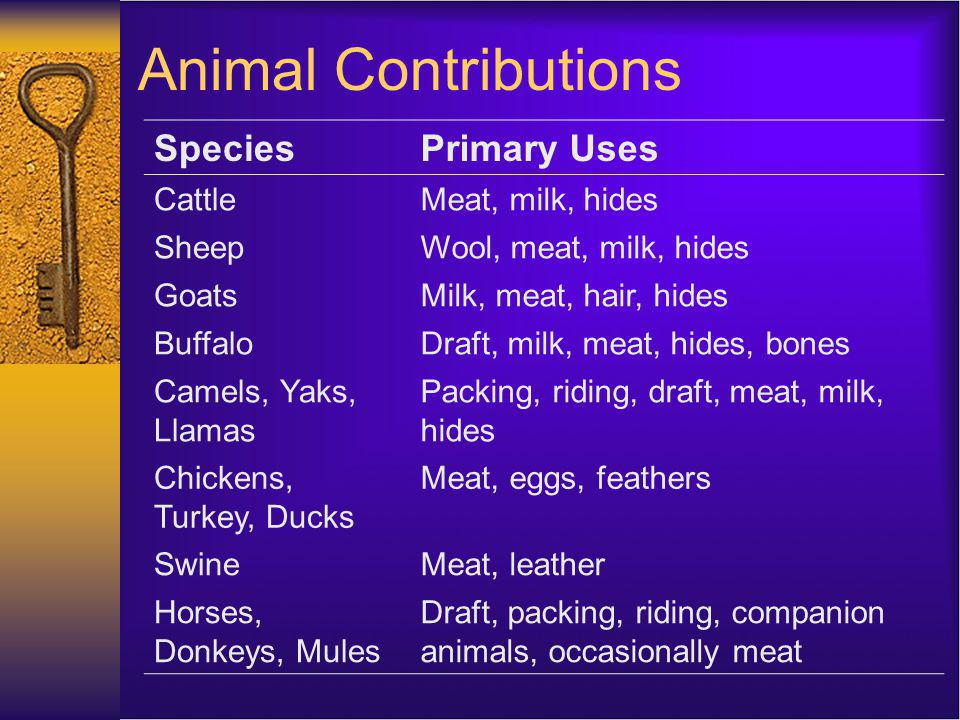 Contribution of Animal Products to the World Diet Animal products comprise ~16% of total calories and 37% of total protein.