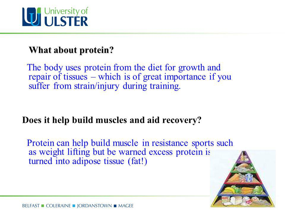 What about protein? The body uses protein from the diet for growth and repair of tissues – which is of great importance if you suffer from strain/inju
