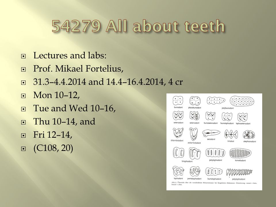 Lectures and labs: Prof.