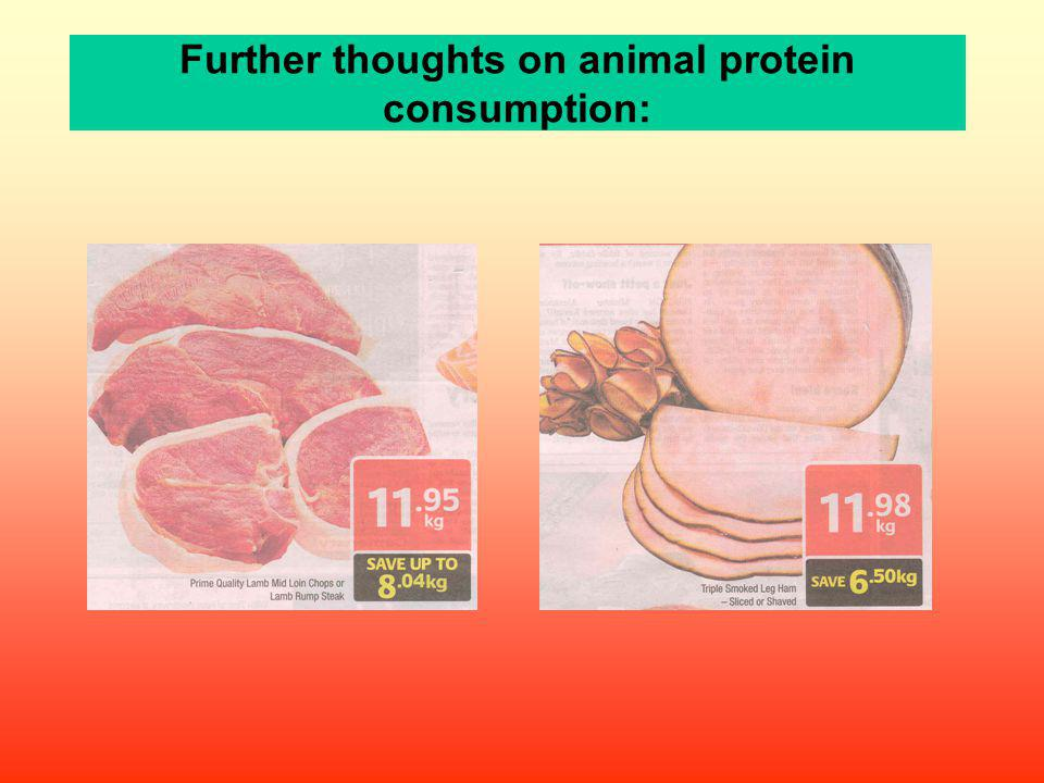 Further thoughts on animal protein consumption: