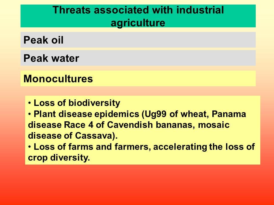 Threats associated with industrial agriculture Peak water Peak oil Loss of biodiversity Plant disease epidemics (Ug99 of wheat, Panama disease Race 4