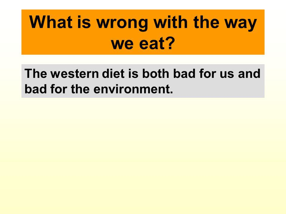 What is wrong with the way we eat.Put simply: There is too much animal protein.