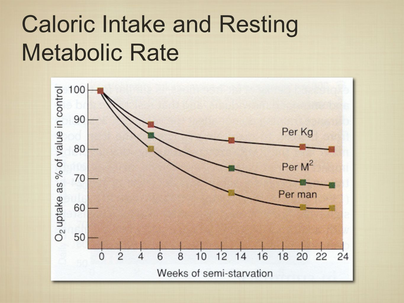 Caloric Intake and Resting Metabolic Rate