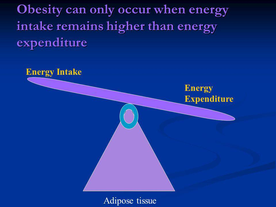 Obesity can only occur when energy intake remains higher than energy expenditure Adipose tissue Energy Intake Energy Expenditure