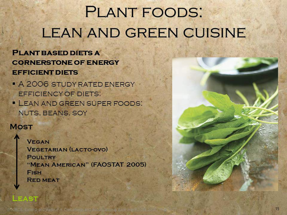 15 Plant foods: lean and green cuisine Most Least Vegan Vegetarian (lacto-ovo) Poultry Mean American (FAOSTAT 2005) Fish Red meat Plant based diets a cornerstone of energy efficient diets SOURCE: Eshel G and Martin P.A.