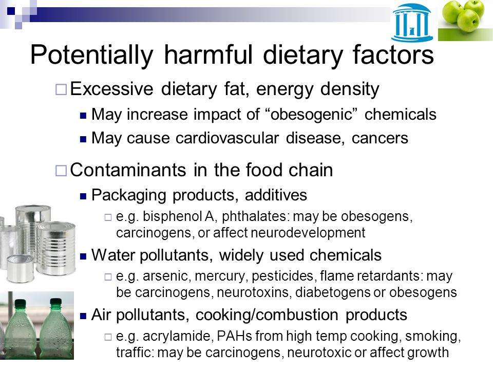 Potentially harmful dietary factors Excessive dietary fat, energy density May increase impact of obesogenic chemicals May cause cardiovascular disease, cancers Contaminants in the food chain Packaging products, additives e.g.