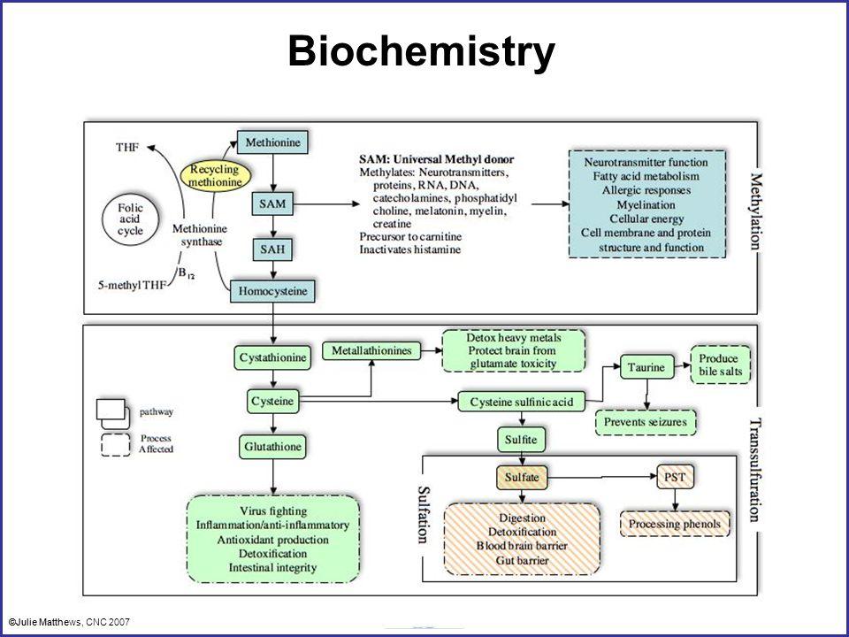 ©Julie Matthews, CNC 2007 Biochemistry