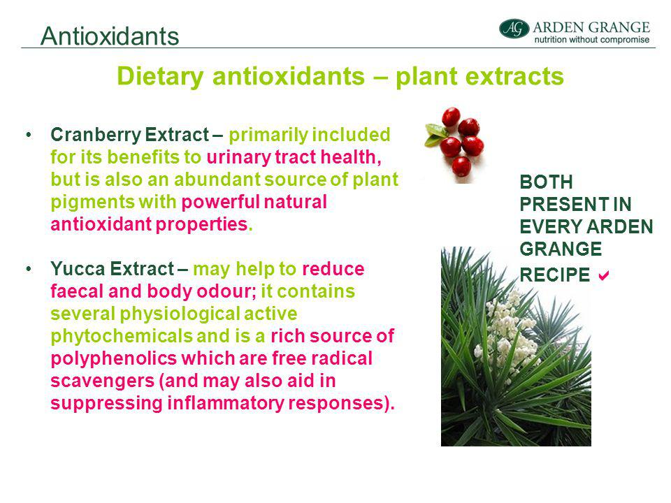 Antioxidants Dietary antioxidants – plant extracts Cranberry Extract – primarily included for its benefits to urinary tract health, but is also an abundant source of plant pigments with powerful natural antioxidant properties.