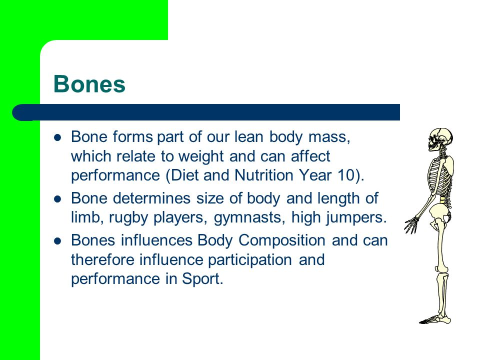 Bones Bone forms part of our lean body mass, which relate to weight and can affect performance (Diet and Nutrition Year 10).