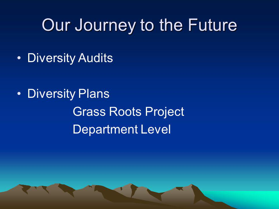 Our Journey to the Future Diversity Audits Diversity Plans Grass Roots Project