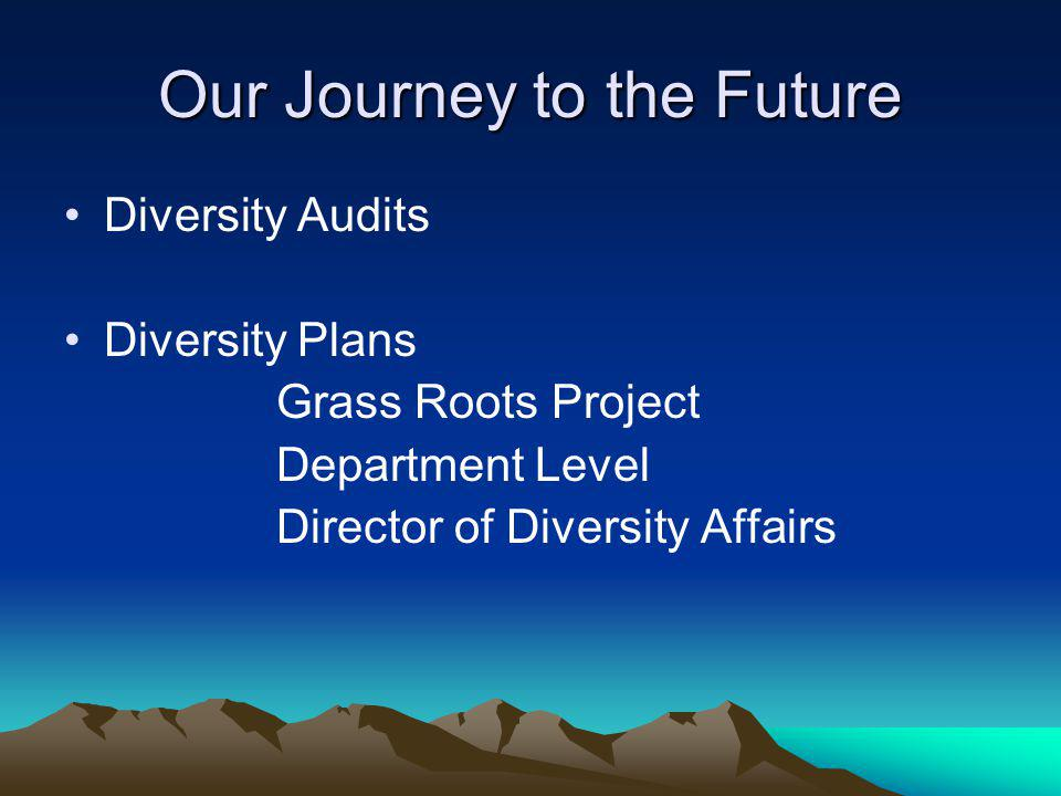Our Journey to the Future Diversity Audits Diversity Plans Grass Roots Project Department Level