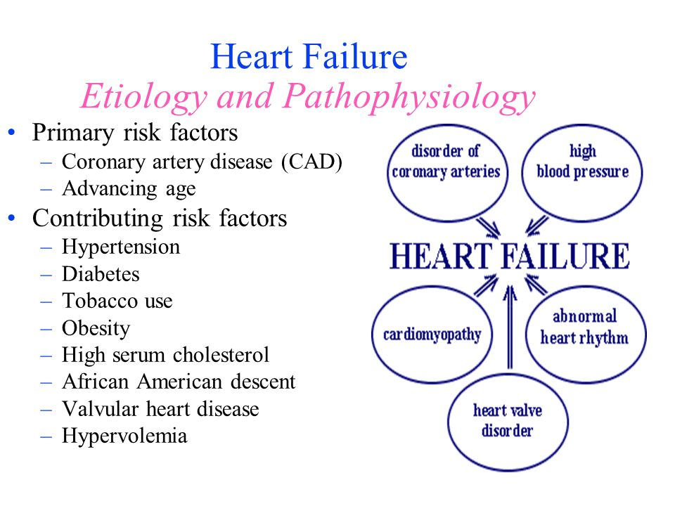 Heart Failure Etiology and Pathophysiology Primary risk factors –Coronary artery disease (CAD) –Advancing age Contributing risk factors –Hypertension