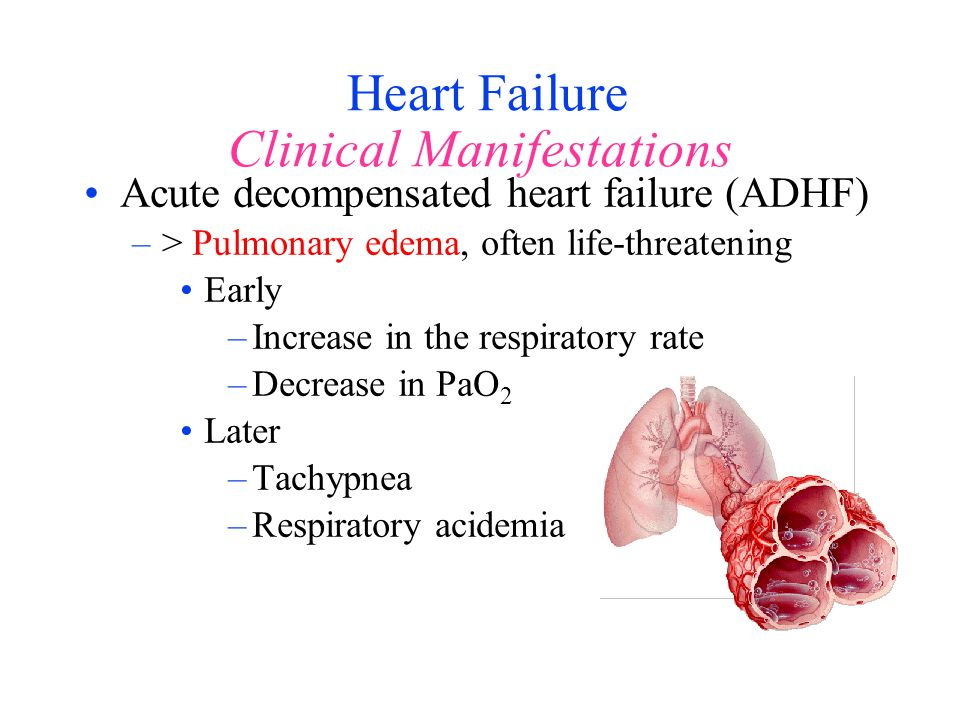 Heart Failure Clinical Manifestations Acute decompensated heart failure (ADHF) –> Pulmonary edema, often life-threatening Early –Increase in the respi