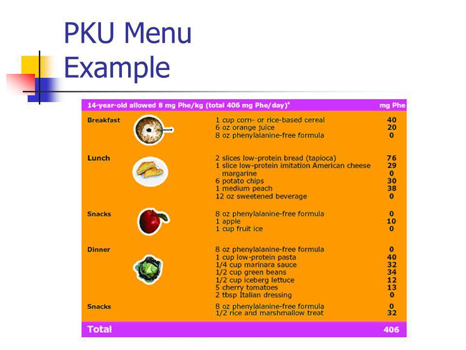PKU Menu Example
