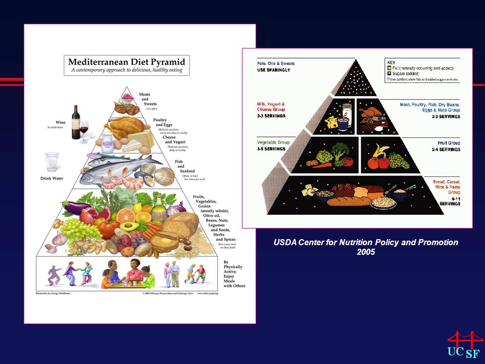 USDA Center for Nutrition Policy and Promotion 2005