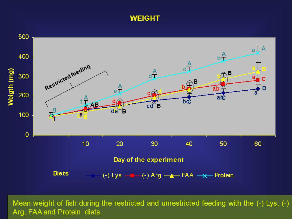 Mean weight of fish during the restricted and unrestricted feeding with the (-) Lys, (-) Arg, FAA and Protein diets.