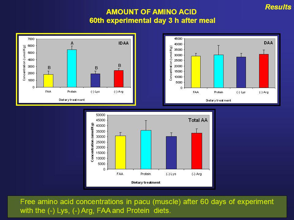Results AMOUNT OF AMINO ACID 60th experimental day 3 h after meal A B B B Free amino acid concentrations in pacu (muscle) after 60 days of experiment with the (-) Lys, (-) Arg, FAA and Protein diets.