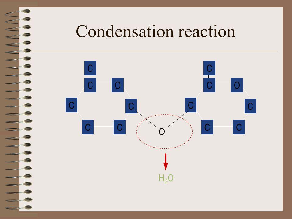 Condensation reaction O CC C C C CO CC C C C C O H2OH2O