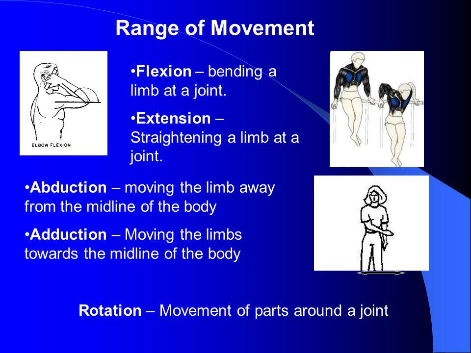 Other types of joints Immoveable joints – these are fixed joints and dont move at all i.e. the the bones in the skull. Slightly moveable joints – Ther